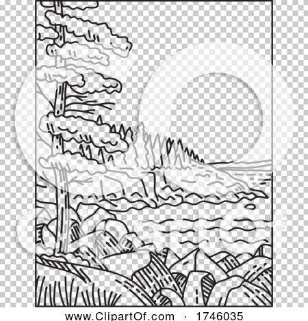Transparent clip art background preview #COLLC1746035