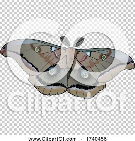 Transparent clip art background preview #COLLC1740456