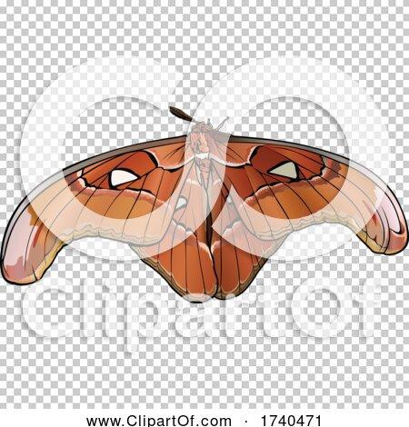 Transparent clip art background preview #COLLC1740471
