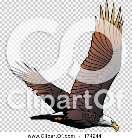 Transparent clip art background preview #COLLC1742441