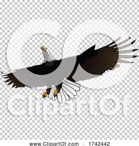 Transparent clip art background preview #COLLC1742442