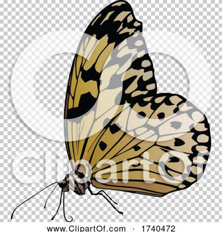 Transparent clip art background preview #COLLC1740472