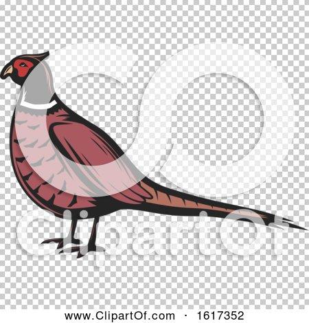 Transparent clip art background preview #COLLC1617352