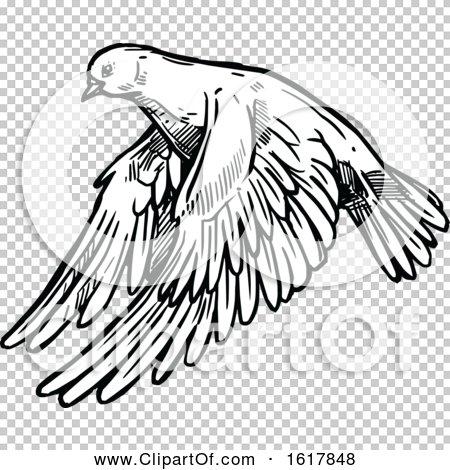 Transparent clip art background preview #COLLC1617848