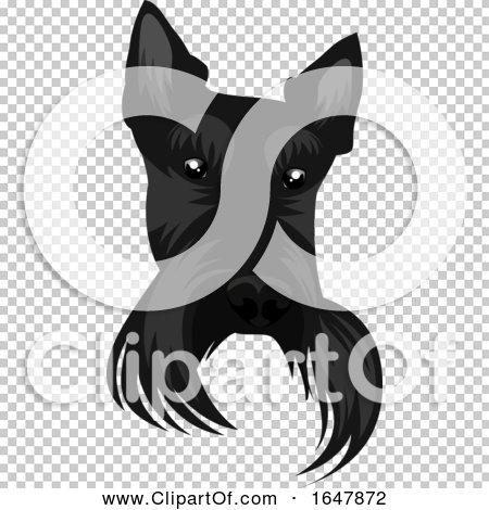 Transparent clip art background preview #COLLC1647872