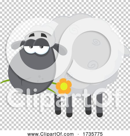 Transparent clip art background preview #COLLC1735775
