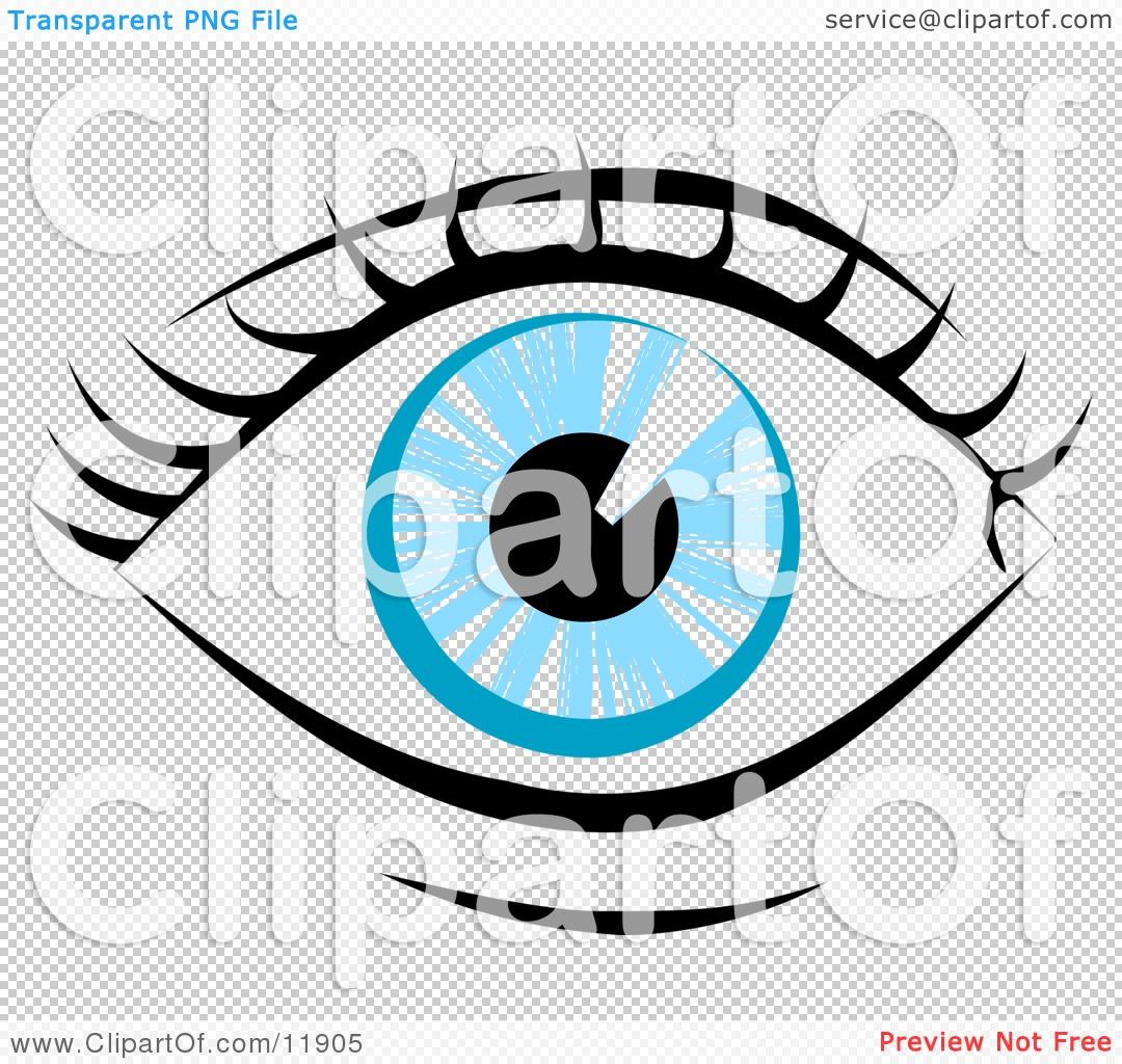 Funny Eyes Clip Art Royalty-free anatomy clipart