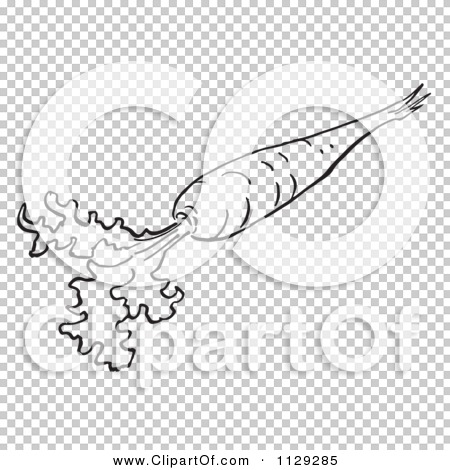 Transparent clip art background preview #COLLC1129285