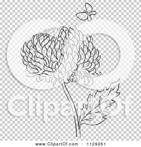 cartoon clipart of an outlined chrysanthemum flower and butterfly black and white vector coloring page by picsburg 1129261