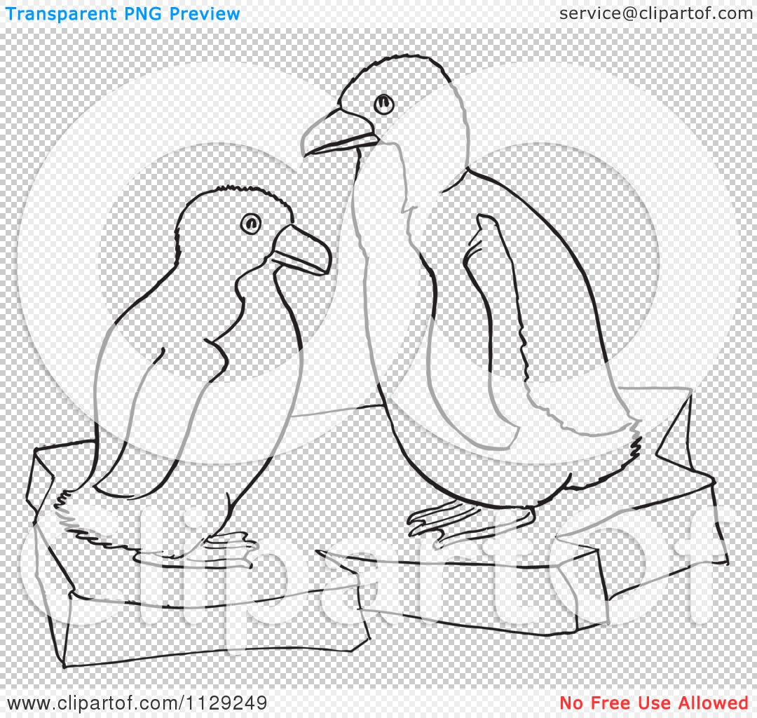 cartoon clipart of outlined cute baby penguins on ice black and