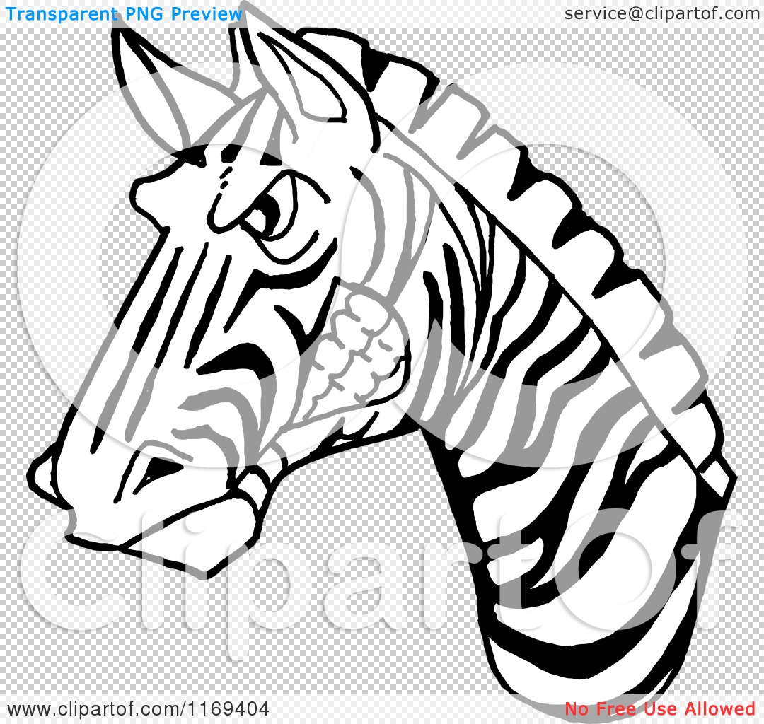 Cartoon of a black and white aggressive zebra head royalty free png file has a transparent background pronofoot35fo Gallery