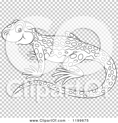 Cartoon of a Black and White Cute Newt - Royalty Free ...