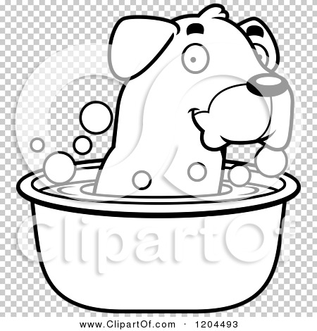 Transparent clip art background preview #COLLC1204493