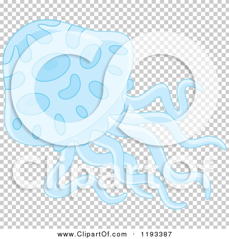 Transparent clip art background preview #COLLC1193387