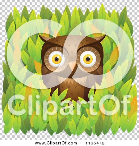 Transparent clip art background preview #COLLC1135472