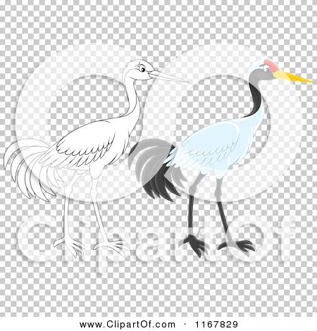 Transparent clip art background preview #COLLC1167829