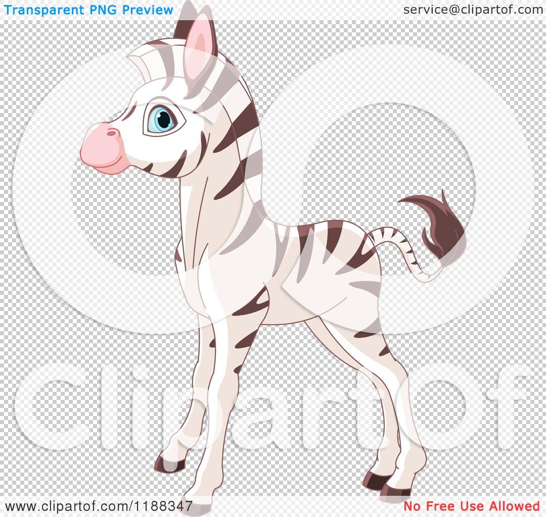 Baby Zebra Png - Viewi...Zebra Vector Png