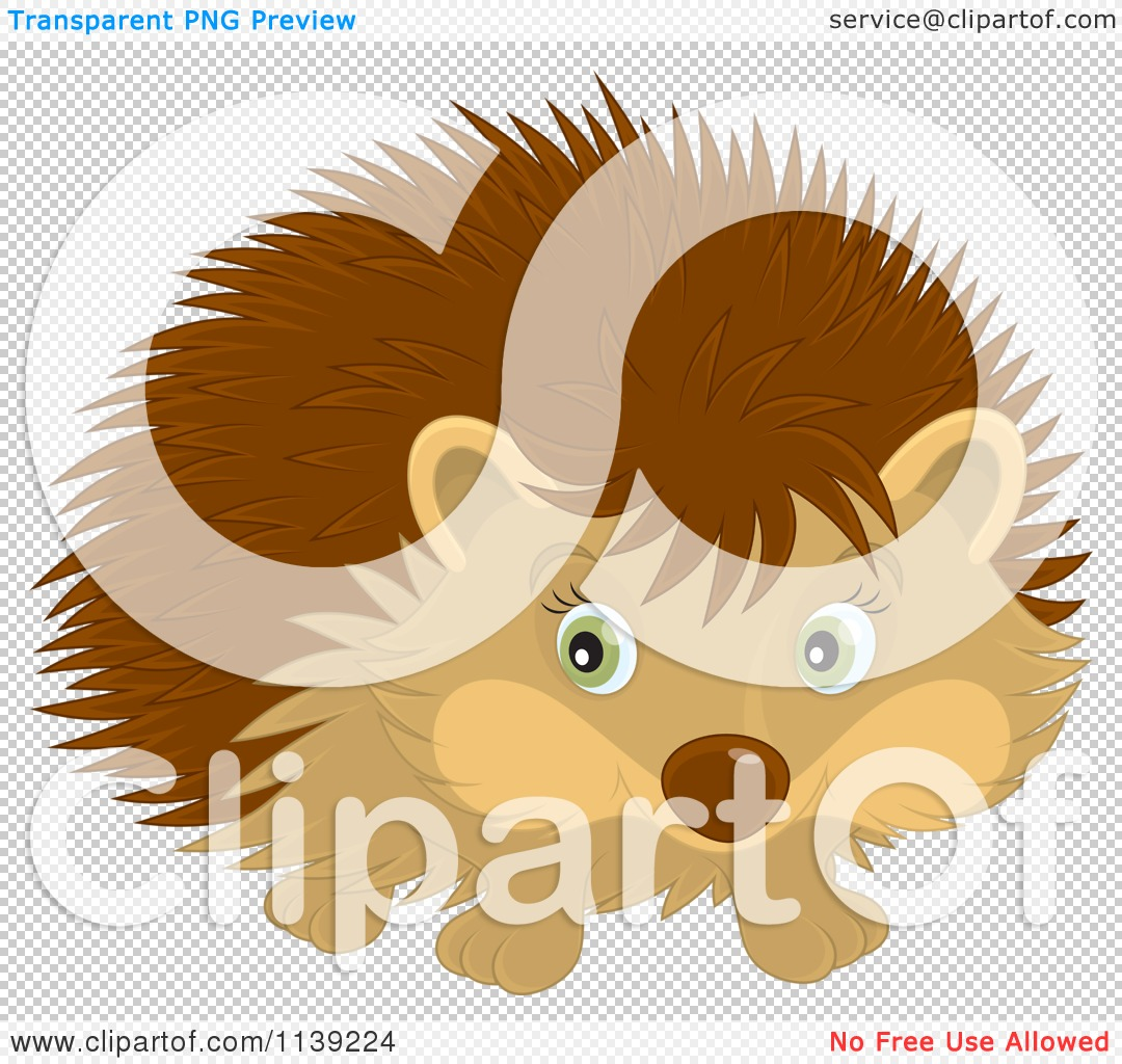 Cartoon Of A Cute Brown Hedgehog - Royalty Free Vector Clipart by ...