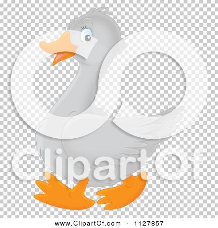 Transparent clip art background preview #COLLC1127857