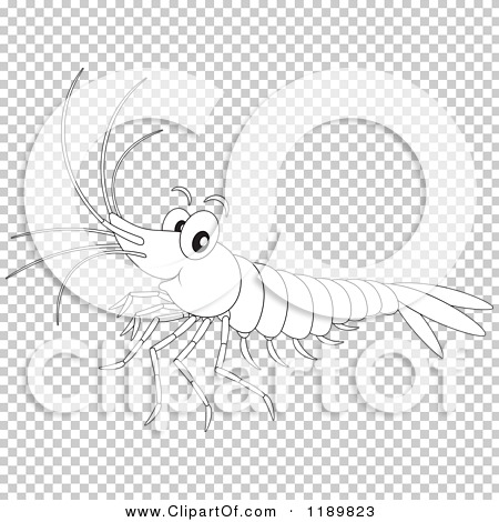 Transparent clip art background preview #COLLC1189823