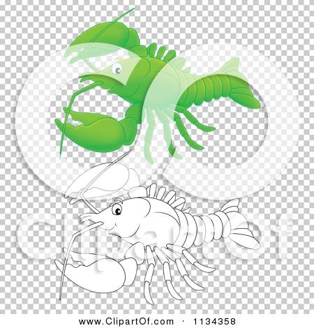 Transparent clip art background preview #COLLC1134358