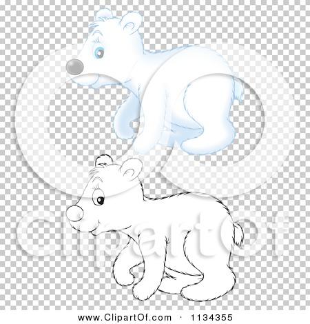 Transparent clip art background preview #COLLC1134355
