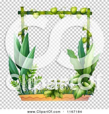 Transparent clip art background preview #COLLC1167184
