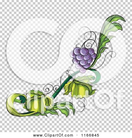 Transparent clip art background preview #COLLC1166845