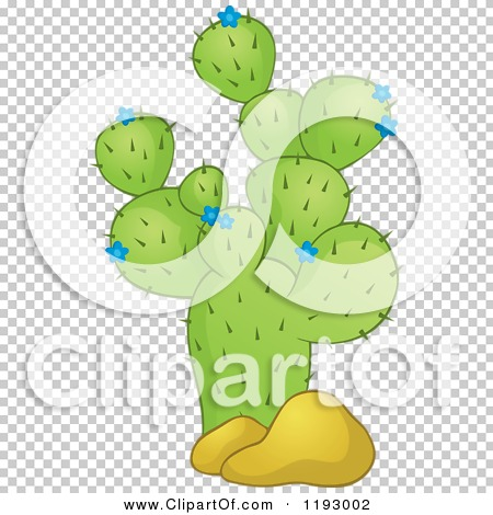 Transparent clip art background preview #COLLC1193002
