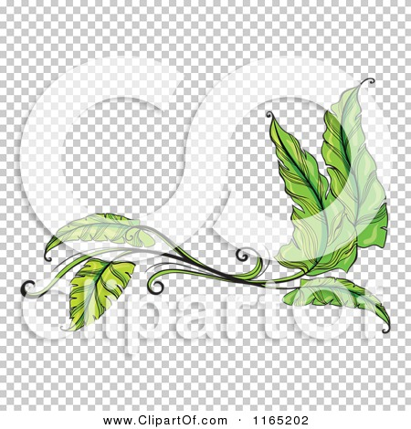 Transparent clip art background preview #COLLC1165202