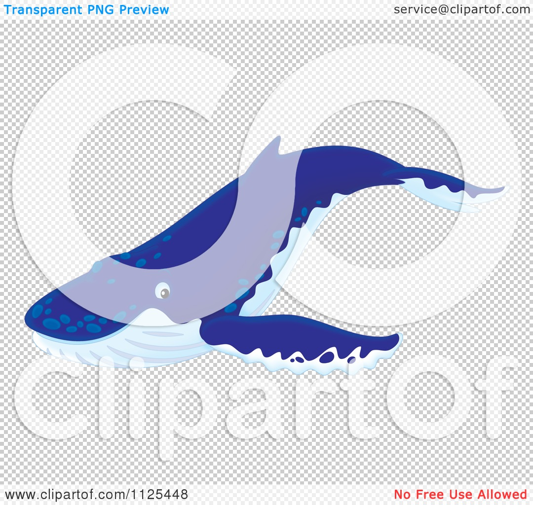 cartoon of a happy cute humpback whale royalty free clipart by