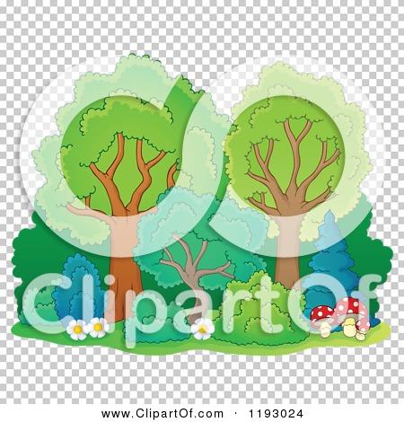 Transparent clip art background preview #COLLC1193024