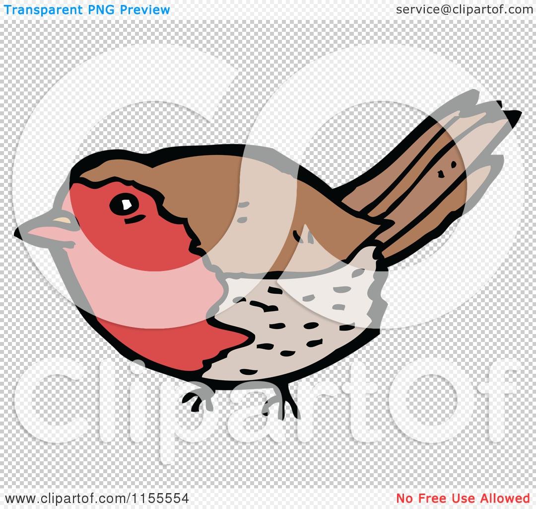 Red Robin Bird Cartoon Cartoon of a robin bird