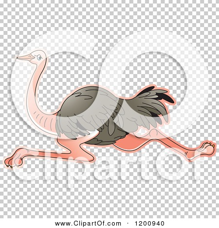 Transparent clip art background preview #COLLC1200940