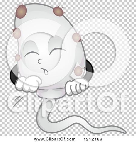 Transparent clip art background preview #COLLC1212188