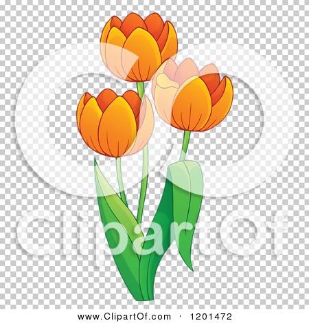Transparent clip art background preview #COLLC1201472