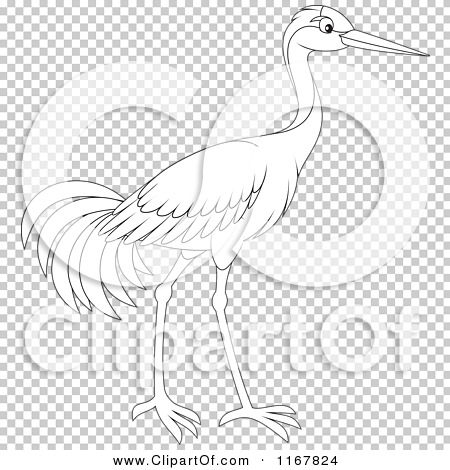 Transparent clip art background preview #COLLC1167824