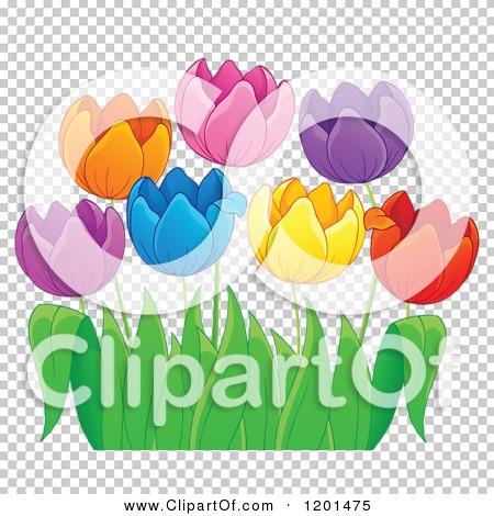 Transparent clip art background preview #COLLC1201475