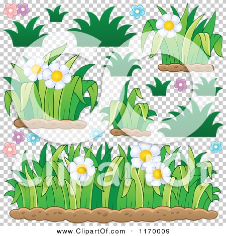 Transparent clip art background preview #COLLC1170009