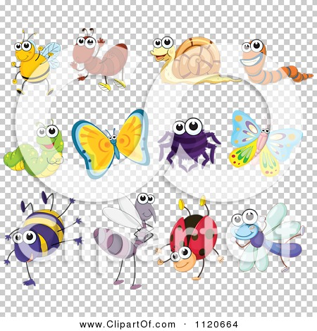 Transparent clip art background preview #COLLC1120664