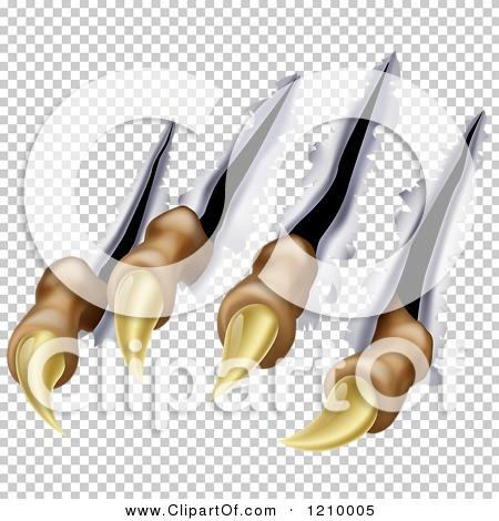Transparent clip art background preview #COLLC1210005