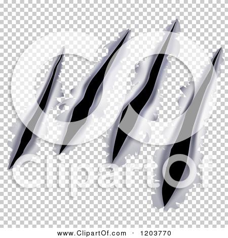 Transparent clip art background preview #COLLC1203770