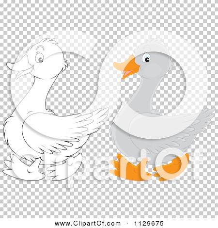 Transparent clip art background preview #COLLC1129675