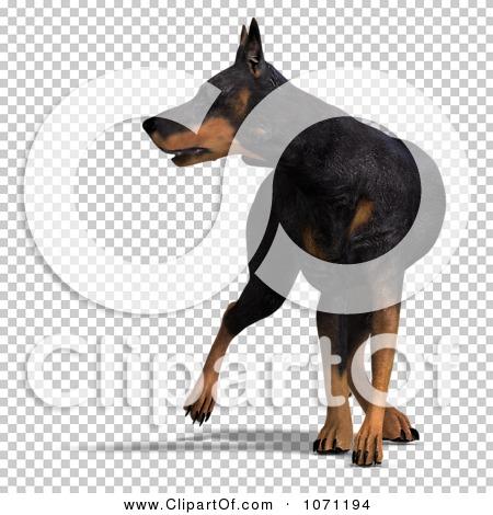 Transparent clip art background preview #COLLC1071194
