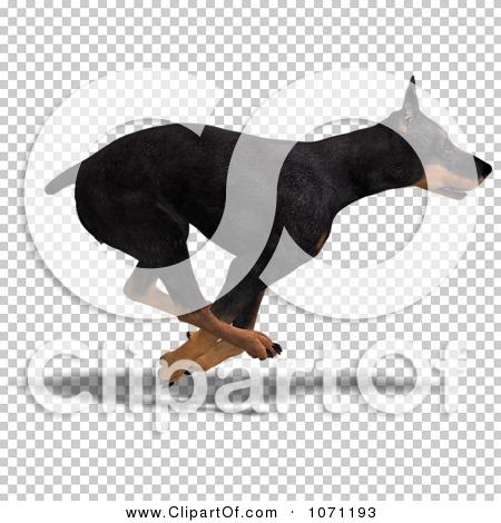 Transparent clip art background preview #COLLC1071193