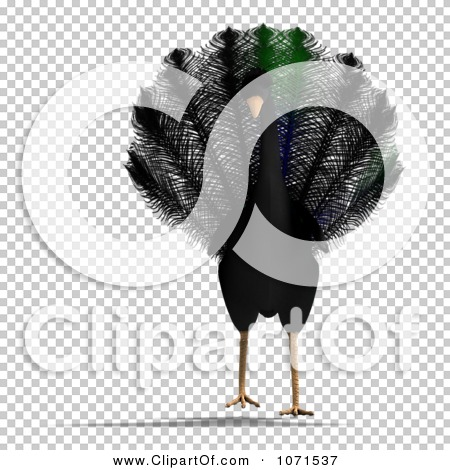 Transparent clip art background preview #COLLC1071537