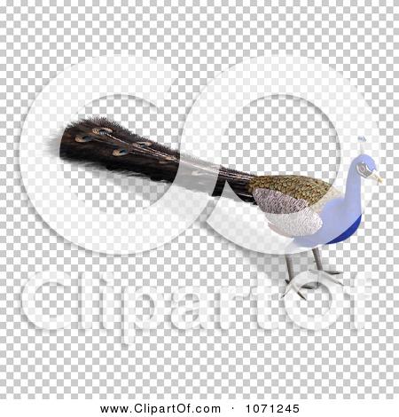 Transparent clip art background preview #COLLC1071245
