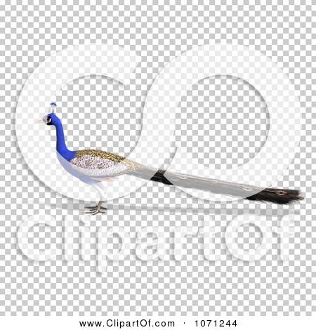 Transparent clip art background preview #COLLC1071244
