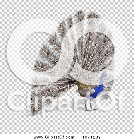 Transparent clip art background preview #COLLC1071239