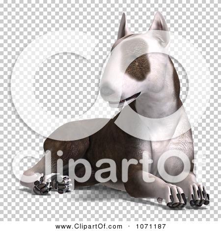 Transparent clip art background preview #COLLC1071187
